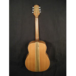 Larkin Guitars - Larkin ASAP J