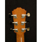 Morgan Guitars - Morgan Concert - Mahogany