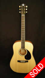 Morgan Dreadnought - Mahogany/Adirondack