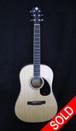 Morgan Guitars - Morgan Slope Shoulder Dreadnought, Used