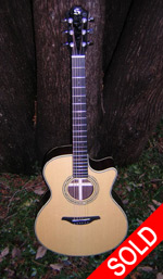 Stonebridge Guitars - Stonebridge GS24-SR